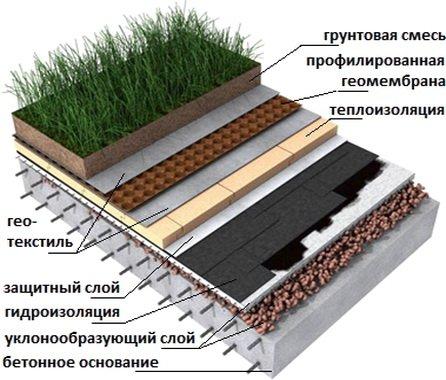 Конструкция плоской кровли с газоном сверху