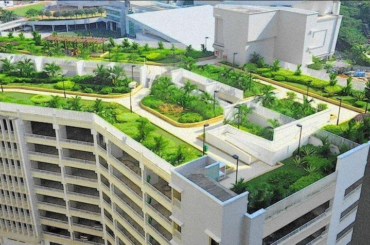 Плоская крыша с эксплуатируемым покрытием - зеленые насаждения