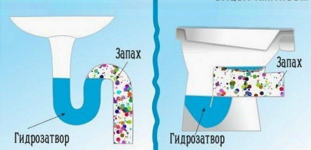 Гидрозатворы запирают канализацию