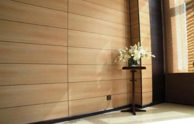 красивая стена с панелями